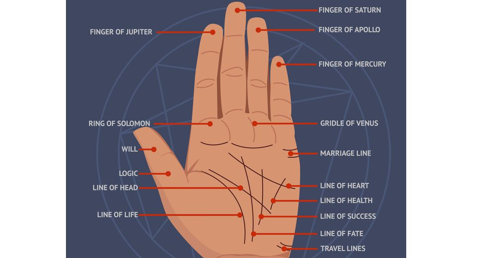 Your chinese astrology palm reading